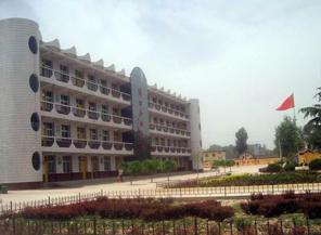 陕西洛南古城中学图片
